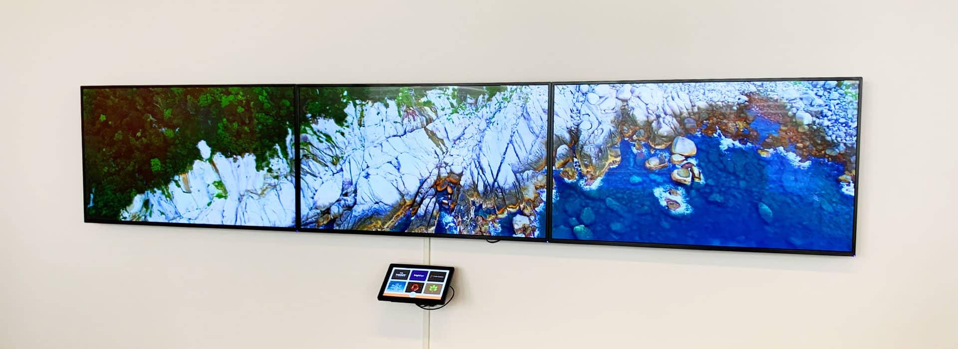 Bluefin Display als BrightSign Controlpanel
